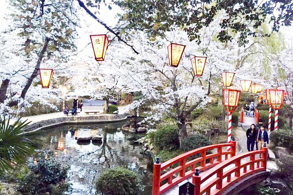 Utsubuki-Park-2